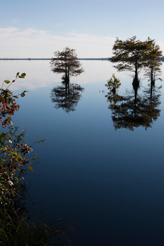 Lake Drummond, Great Dismal Swamp, Suffolk, VA, October 20, 2013